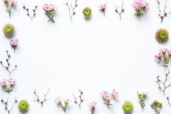 Розовая рамка цветков на белой предпосылке стоковая фотография rf