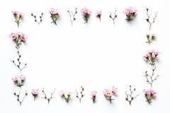 Розовая рамка цветков на белой предпосылке Стоковая Фотография