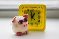 Розовая свинья со стеклами и желтыми часами стоковая фотография