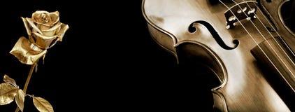 розовая скрипка скрипка золота и красивая золотая роза на черной предпосылке стоковое изображение rf