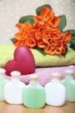 Розовая спа Стоковые Фотографии RF