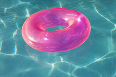 Розовая трубка поплавка плавая в бассейн стоковое фото rf