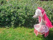 Розовая утка на зеленой предпосылке куста Стоковые Изображения RF