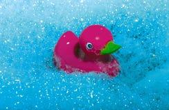 Розовая утка плавая на голубые пузыри стоковое фото rf