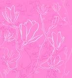 Розовая флористическая предпосылка Стоковое Фото