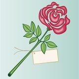 розовое Валентайн Стоковое Изображение