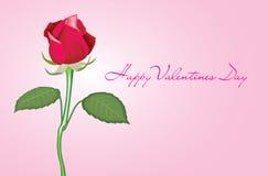 розовое Валентайн Стоковая Фотография