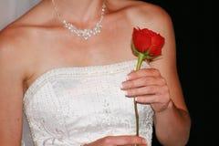 розовое венчание Стоковое фото RF