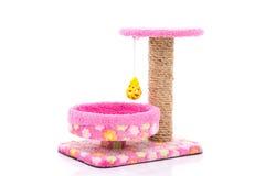 Розовое дерево кота на белой предпосылке стоковые фотографии rf