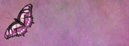 Розовое знамя доски для сообщений бабочки Стоковая Фотография