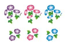 Розовое иллюстрации славы утра установленное, голубой, фиолетовый Стоковая Фотография RF