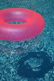 Розовое кольцо 2 бассейна Стоковая Фотография RF