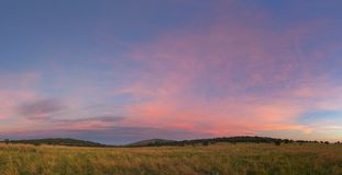 Розовое небо освободившееся государство Стоковые Фото