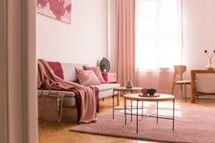 Розовое одеяло на софе рядом с таблицами на пурпурном ковре в плоском интерьере с задрапировывает на окне Реальное фото стоковые изображения rf