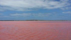Розовое озеро Стоковая Фотография RF