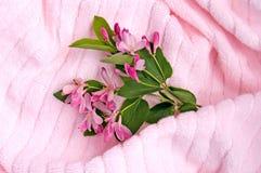 розовое полотенце 3 Стоковые Фотографии RF