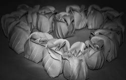 Розовое сердце Стоковая Фотография