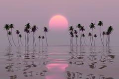 Розовое солнце над островом стоковое изображение