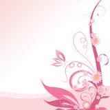 Розовое флористическое иллюстрация штока