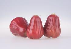 Розовое Яблоко розовое яблоко на предпосылке Стоковые Фото