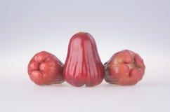 Розовое Яблоко розовое яблоко на предпосылке Стоковая Фотография