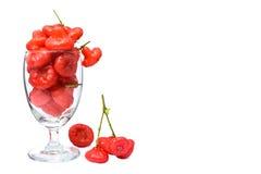 Розовое яблоко, красный плодоовощ в стекле, изолят на белой предпосылке Стоковое фото RF