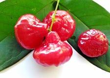 Розовое яблоко от Таиланда Стоковое Изображение RF