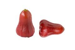 Розовое яблоко стоковое фото