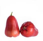 Розовое Яблоко Стоковая Фотография RF