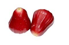 Розовое Яблоко Стоковые Фото