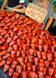 Розовое Яблоко Стоковое фото RF