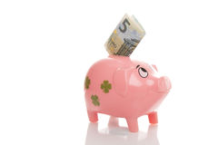 Розовое pigg денег с евро Стоковые Изображения