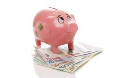 Розовое pigg денег с евро Стоковое Изображение RF