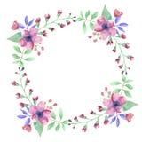 Розовой венок гирлянды цветка акварели покрашенный рукой флористический Стоковые Изображения