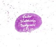 Розовой и фиолетовой элемент дизайна формы акварели покрашенный рукой овальный с брызгает Иллюстрация EPS10 вектора Стоковое Изображение RF