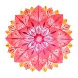 Розовой мандала цветка нарисованная рукой в методе акварелей иллюстрация штока