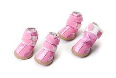 Розовые ботинки собак Стоковая Фотография