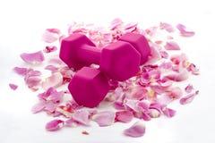 Розовые гантели на кровати лепестков розы Стоковые Изображения