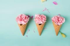 Розовые гвоздики Цветы peonies Розовые пионы на зеленой предпосылке Стоковое фото RF