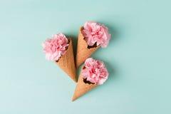 Розовые гвоздики Цветы peonies Розовые пионы на зеленой предпосылке Стоковая Фотография RF
