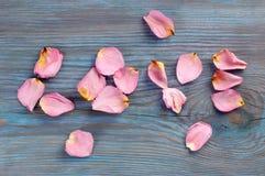 Розовые лепестки розы отображая влюбленность и другие слова Стоковое Изображение RF