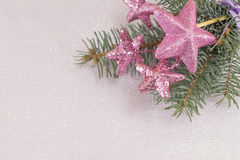 Розовые звезды вися на ветви ели Стоковое фото RF