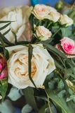 Розовые и белые розы Стоковые Изображения RF