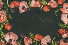 Розовые и красные лепестки цветка, ветви и листья, космос экземпляра Стоковая Фотография