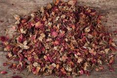 Розовые листья. Стоковые Изображения
