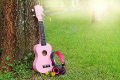 Розовые наушники и музыка гавайской гитары на предпосылке зеленой травы Стоковые Изображения