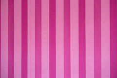 розовые обои Стоковое Изображение