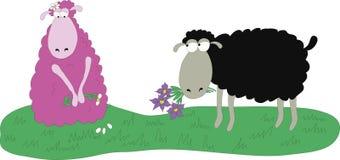 розовые овцы Стоковые Фото