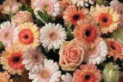 Розовые оранжевые розы и gerbers Стоковая Фотография RF