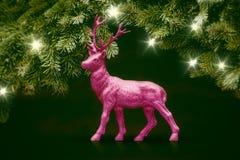 Розовые олени стоковое фото